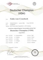 Pablo Deutscher Champion VDH